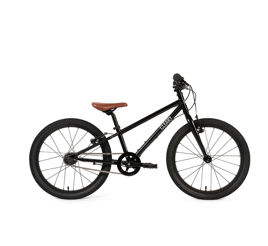 Cleary Owl 3-Speed 20-Inch Kids' Bike