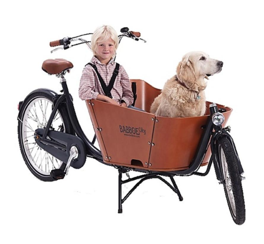 Babboe City Cargo Bike