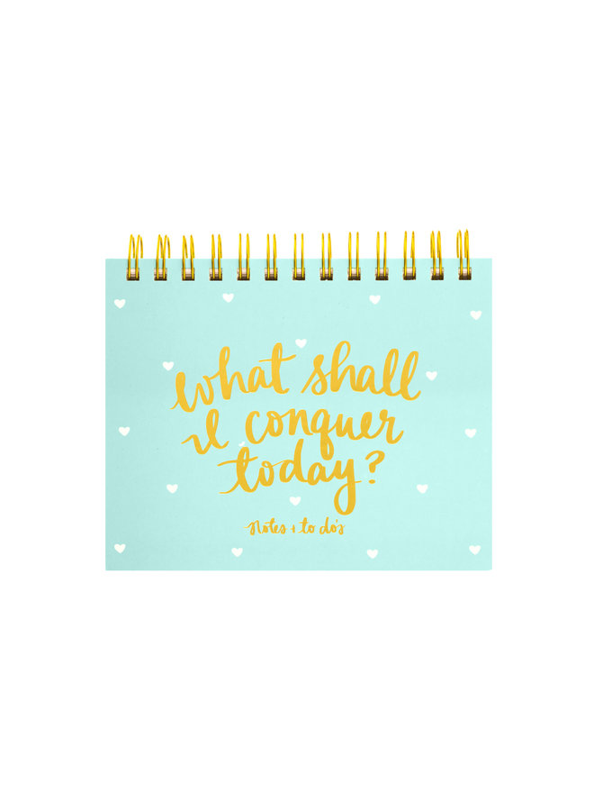 WHAT SHALL I CONQUER TODAY? SPIRAL PLANNER PAD