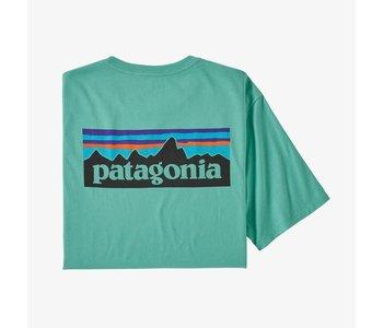 Patagonia - T-shirt homme p-6 logo organic light beryl green