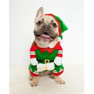 Pet Krewe Pet Krewe Elf (3 Sizes)