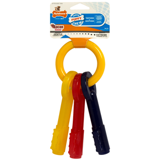 Nylabone Nylabone Puppy Teething Keys
