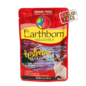 Earthborn Earthborn Holistic Moist Grain Free Upstream Grill Pouch Cat Food 3oz