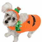 Pet Krewe Pet Krewe Pumpkin Costume (4 Sizes)