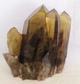 Smoky Citrine Phantom Cluster ~ Tibet    Channel, Crater, Starbrary, Time Link, Window