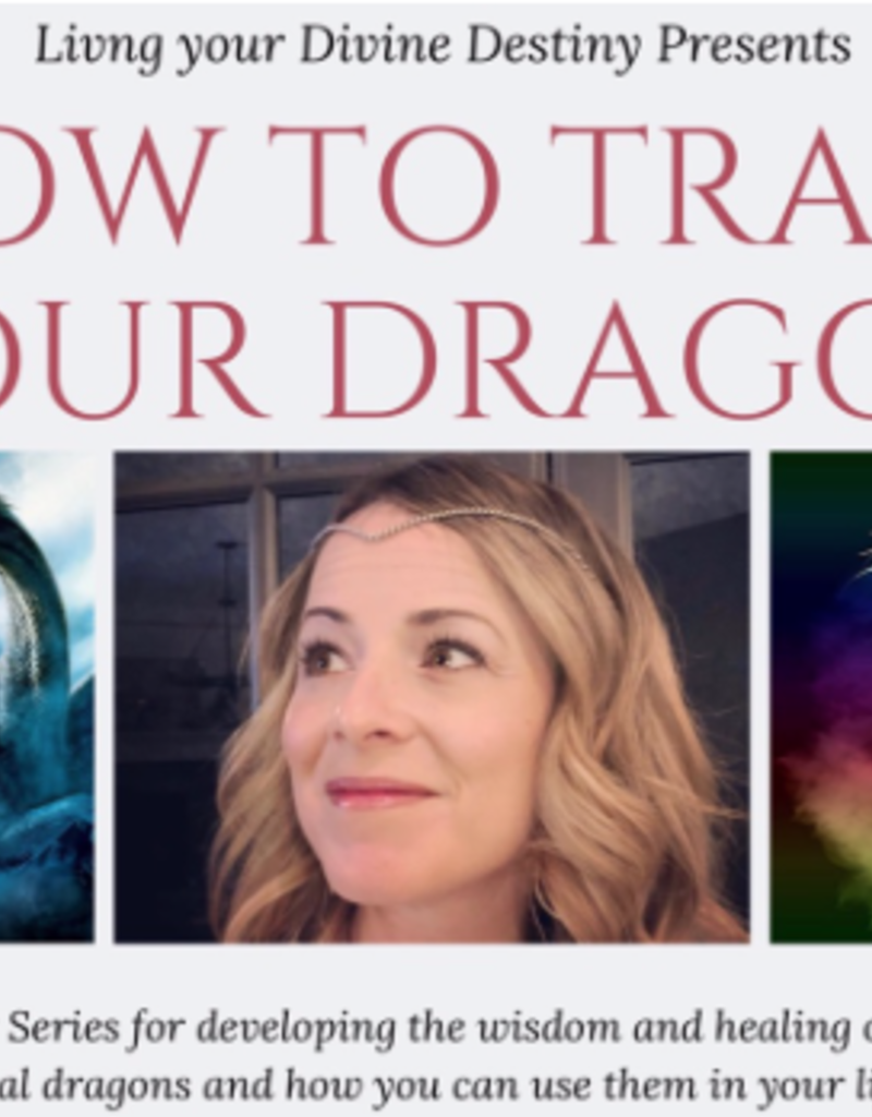 How to Tame Your Dragon ~ Part 1 Rose Pink Dragons