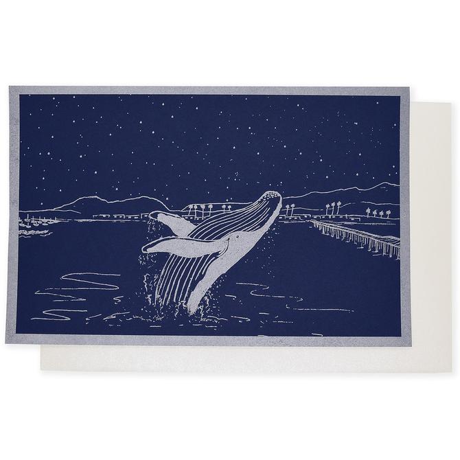 folio2p Whale Breach