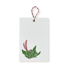 folio2p Succulents - Gift Tag