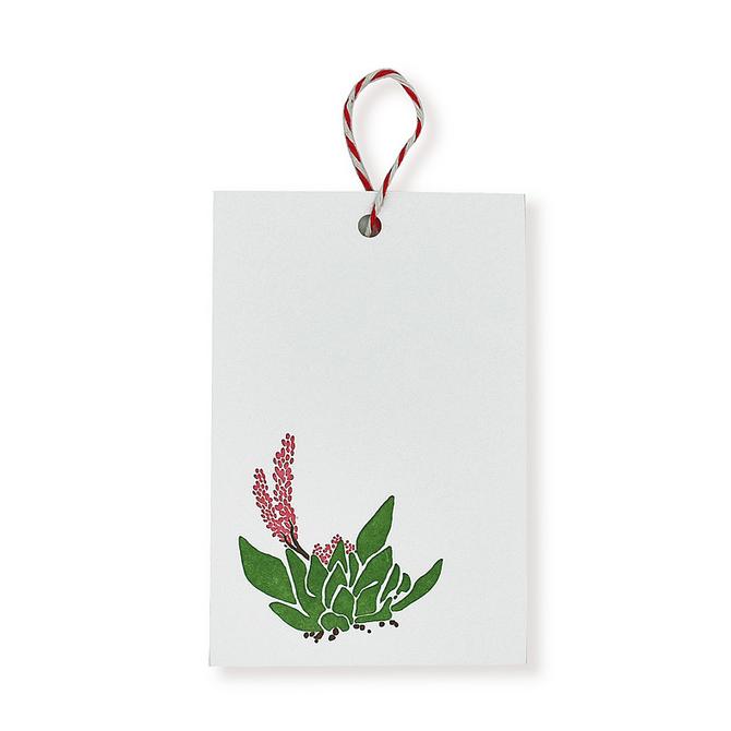 folio2p Succulents - Gift Tag