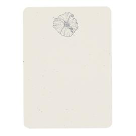 folio2p Matilija Poppy - Boxed Tails
