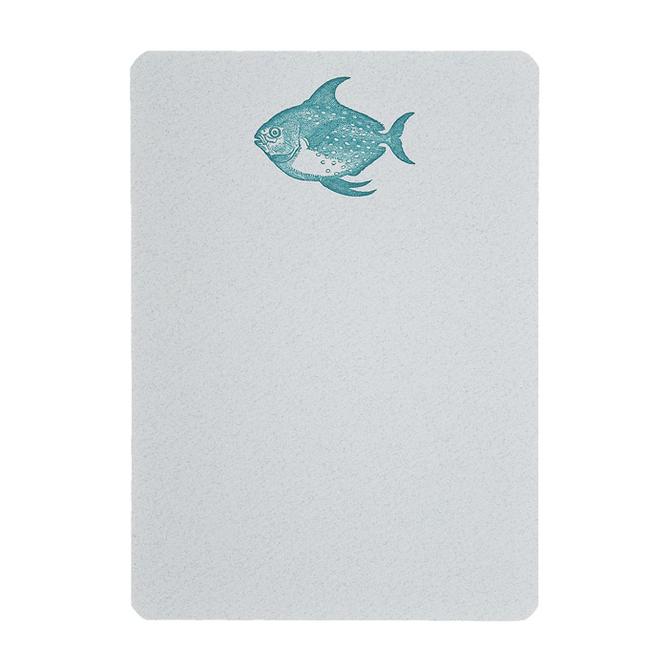 folio2p Sunfish - Boxed Tails
