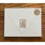 folio2p Sun Surfer Envelope Box
