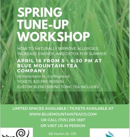 Spring Tune Up Workshop