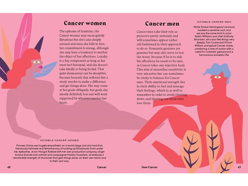 Chronicle Books Seeing Stars Cancer