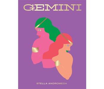 Seeing Stars Gemini Book