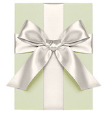 Waste Not Paper Satin Ivory Ribbon