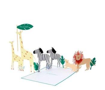 Safari Baby Concertina