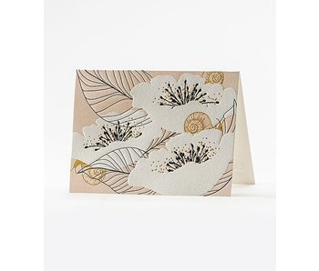 Escargot Boxed Notecards