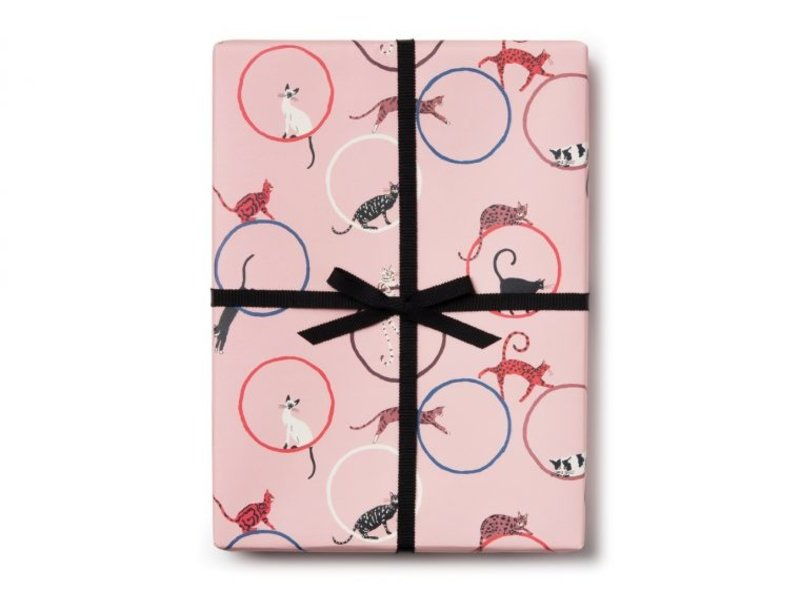 Red Cap Cards Cat Ring Gift Wrap