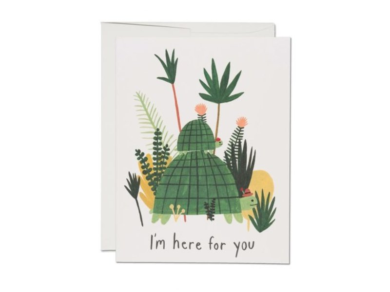 Red Cap Cards Here for You Turtles