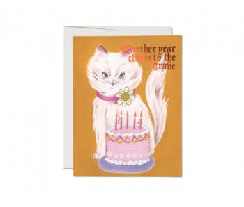 Kitty and Cake