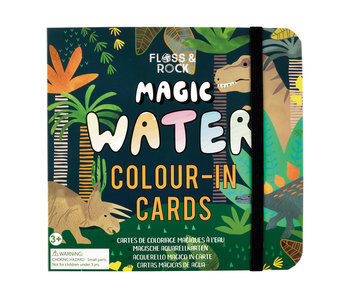Dino Water Pen and Cards