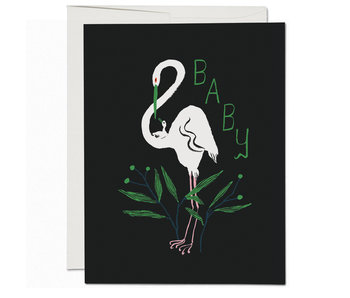 Egrets Baby