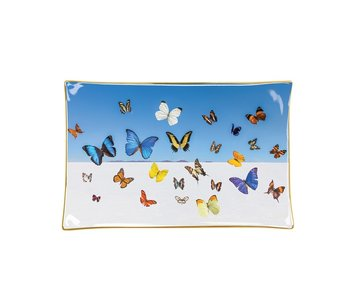 Gray Malin The Butterflies Porcelain Tray