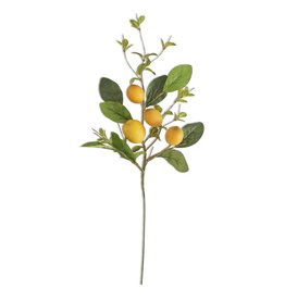 "K&K Interiors 28"" Lemon Foliage Stem"