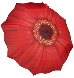 Galleria Enterprises Red Daisy Umbrella