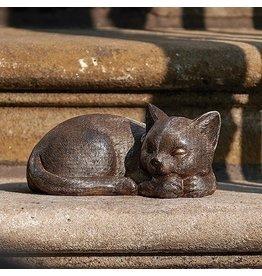 Roman Sleeping Cat