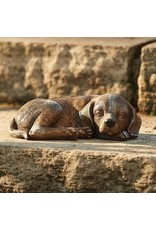 Roman Sleeping Dog