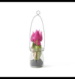 K&K Interiors Mini Tulip in Glass Bottle with Black Stones
