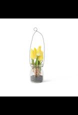 "K&K Interiors Mini Tulip in Glass Bottle with Black Stones 8"""