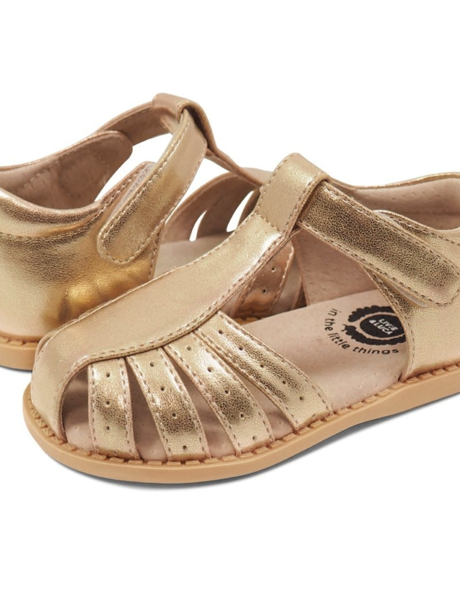 Livie and Luca PAZ Sandal in Gold Metallic