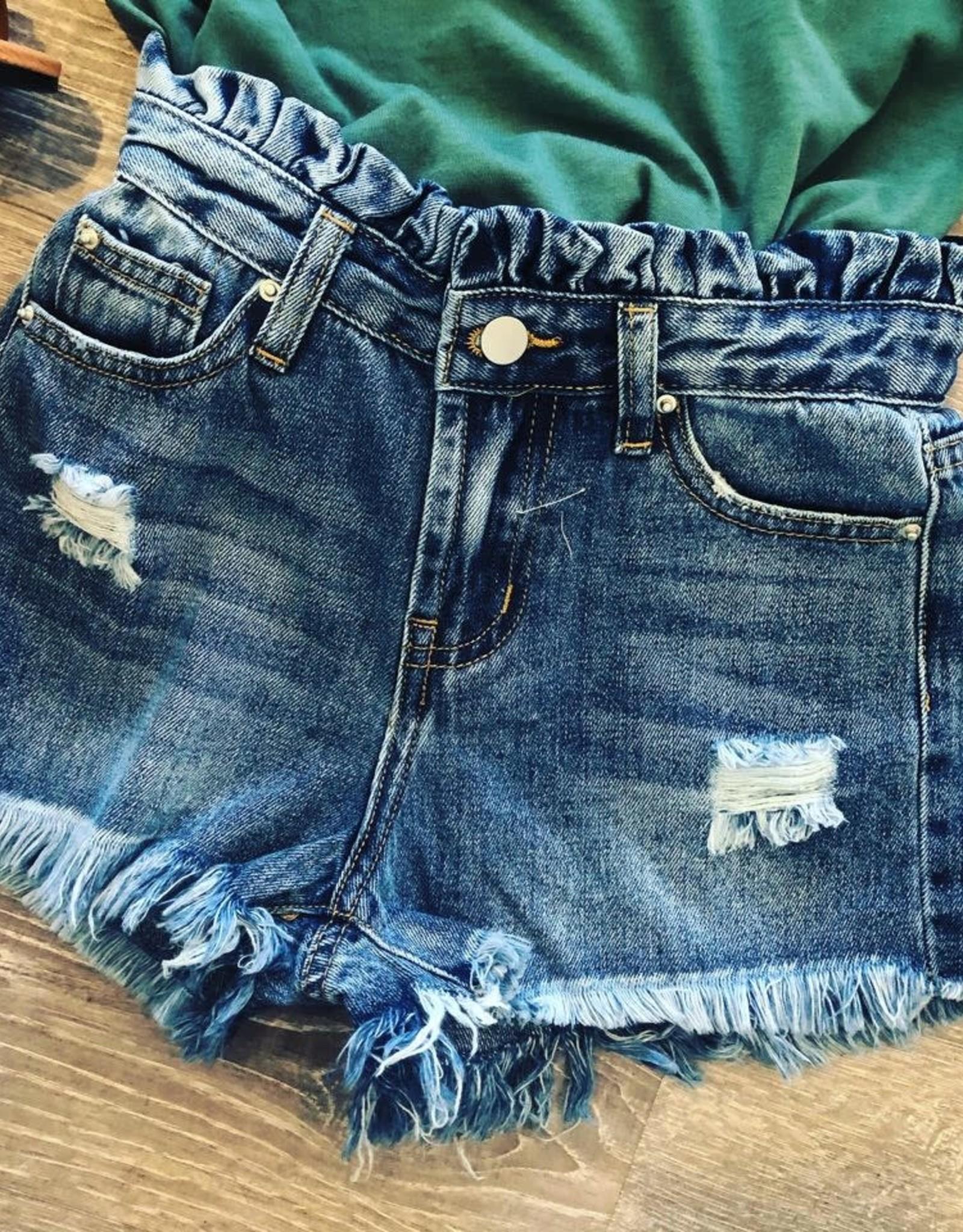 Hayden Distressed High Waist Denim Shorts