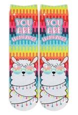 Sublime Designs You Are LLamazing Socks(LMZ) Shoe Size 11-4
