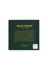 Pintrill Flower Series - Birds of Paradise
