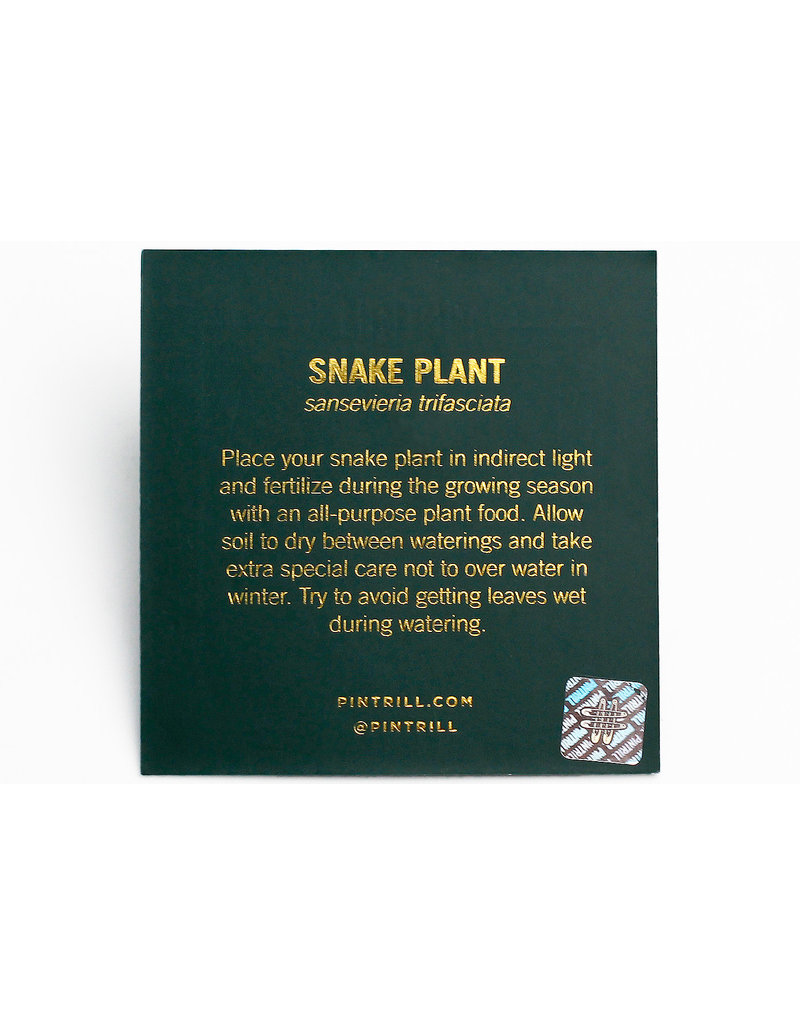 Plant Series - Snake Plant Pin