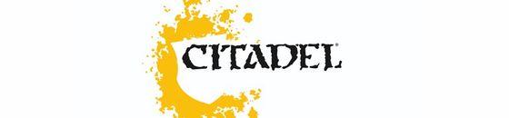 Citadel Cases