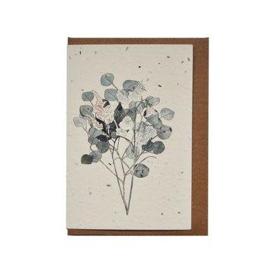 Lili Graffiti Botany (seeded)