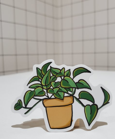 Sticker Pothos