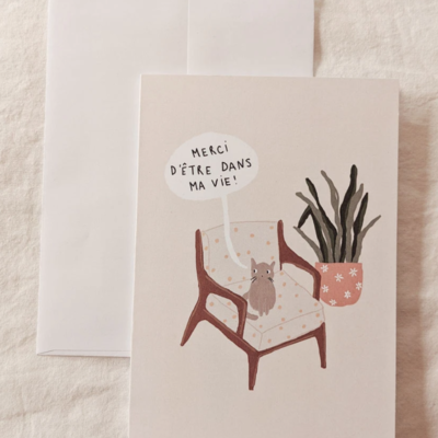 Mimi - Auguste Merci chat