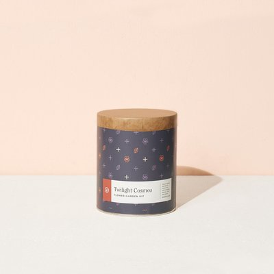 Modern sprout Jardinières papier - Twilight Cosmos
