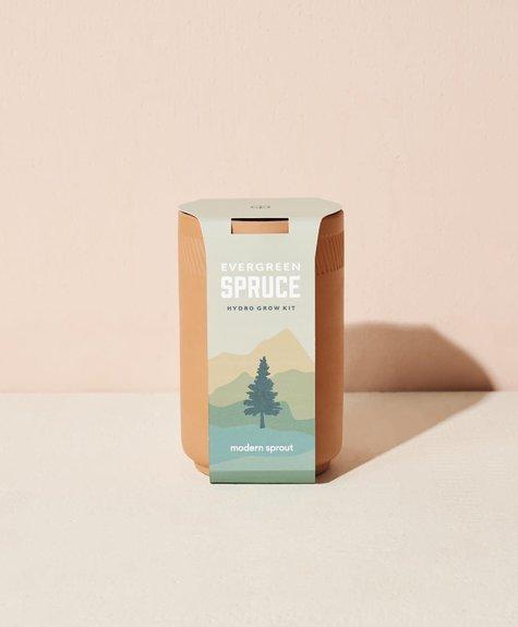 Modern sprout Kit Terracotta - Épinette