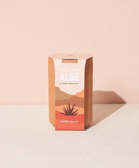 Modern sprout Kit Terracotta - Aloe