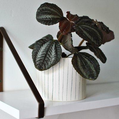 Bar à Plantes Moon Pot - Striped