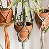Sarah La Lune Plant hanger - Alhena