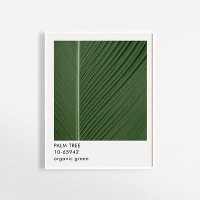 Opale Poster - Palm Tree