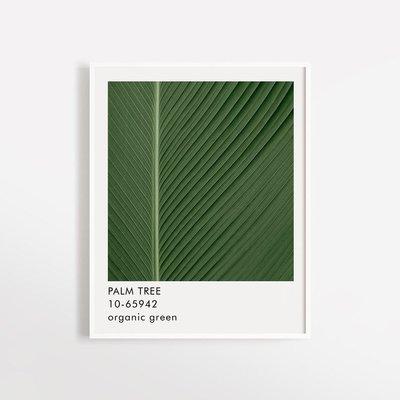 Opale Affiche - Palm Tree (8x10)